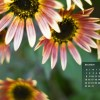 Add A Calendar To Any Desktop Background
